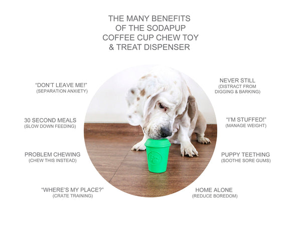 the-many-benefits-of-the-sodapup-treat-dispensing-chew-toy