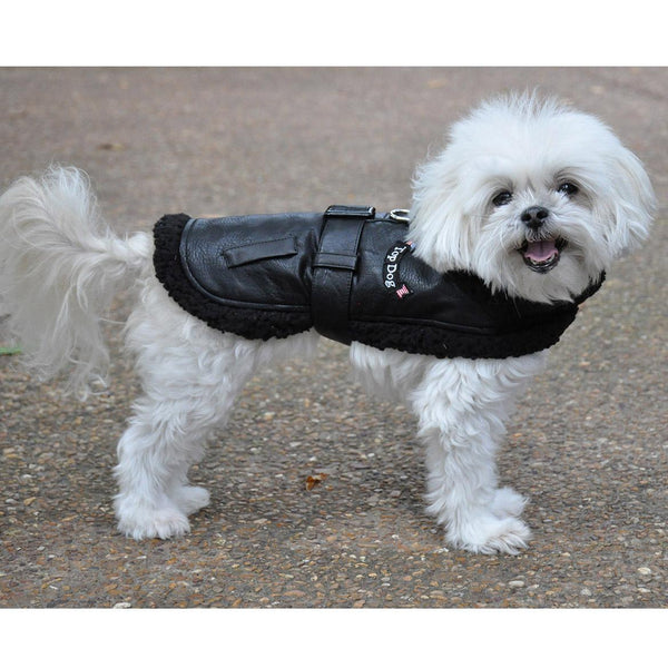 top-dog-flight-harness-coat-side-view