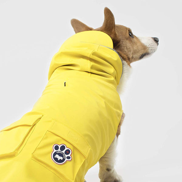 torrential-tracker-dog-raincoat-back-view