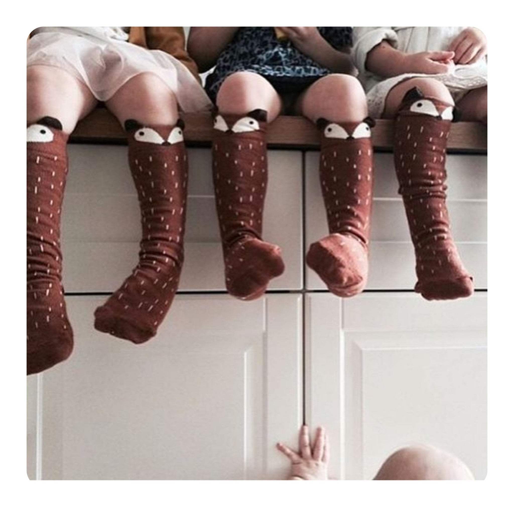 Mini Dressing Knee High Raccoon Socks