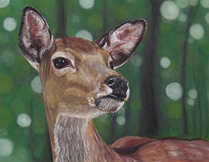 On Alert - Colored Pencil Artwork by Kristy Allen