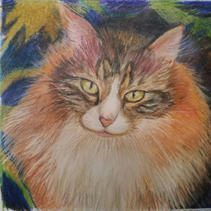 Bianca - Colored Pencil Artwork by Donna Everage