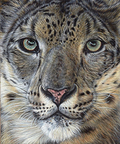Hear My Voice - Colored Pencil Artwork by Lisa Ann Watkins
