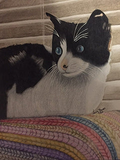 Luna - Colored Pencil Artwork by Sheila Norwood