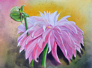 Pink Dahlia - Colored Pencil Artwork by Toni Lea
