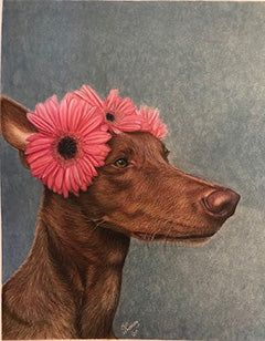 Chester the Pharaoh Hound - Colored Pencil Artwork by Jill Whatley