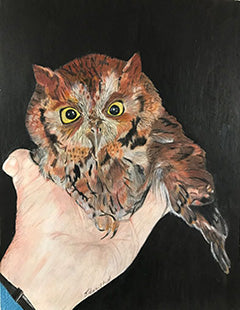 Bird in Hand - Colored Pencil Artwork by Judith Hamilton