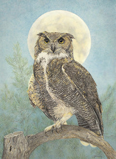 Nightwatch - Colored Pencil Artwork by Irma Murray