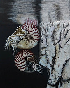 Wonders of the Deep - Colored Pencil Artwork by Laurilee Taylor