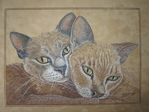 Burmese Brothers - Colored Pencil Artwork by Jennifer Bateson
