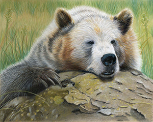 Is It Friday Yet? - Colored Pencil Artwork by Paula Greer