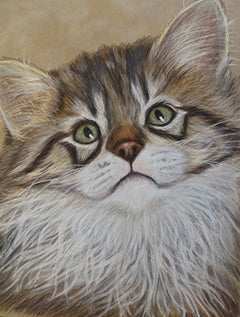 Who Me? - Colored Pencil Artwork by Pamela Young