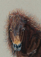 Breezy's Bad Hair Day - Colored Pencil Artwork by Becky Eileen Eller