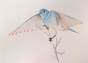 On The Wing by Gloria Edwards