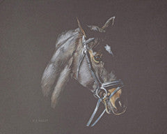 Starlight's Watchful Eye - Colored Pencil Artwork by Helen Bailey