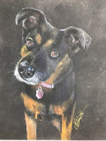 Robyn - Colored Pencil Artwork by Judith Hamilton