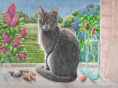 Grey cat in the window - Colored Pencil Artwork by Lene Daugaard