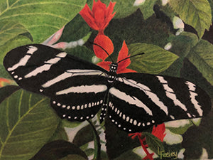 Black and White on Red by Linda Feeley
