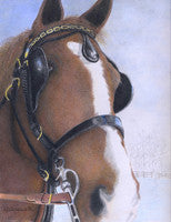 Chocolate Mousse - Colored Pencil Artwork by Linda Killingsworth