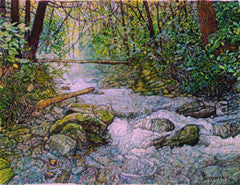 The Mist at Upper Pine Bottom - Colored Pencil Artwork by Mark Neuherz