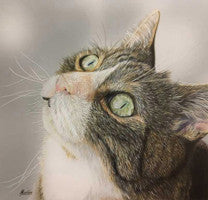 Charlie - Colored Pencil Artwork by Martine Venis-Heethaar