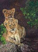 Wild Innocence - Colored Pencil Artwork by P. Craig Ellertson