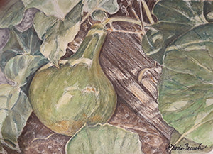 Gourds by Patricia Hovis-French
