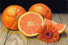 Oranges - Colored Pencil Artwork by Rebecca V. O'Neil