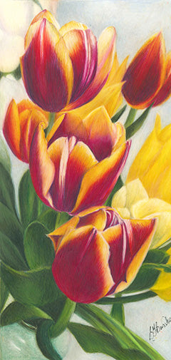 Spring Tulips by Sarah Bowsher
