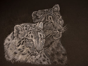 Ghost Cats by Susan Grimwood