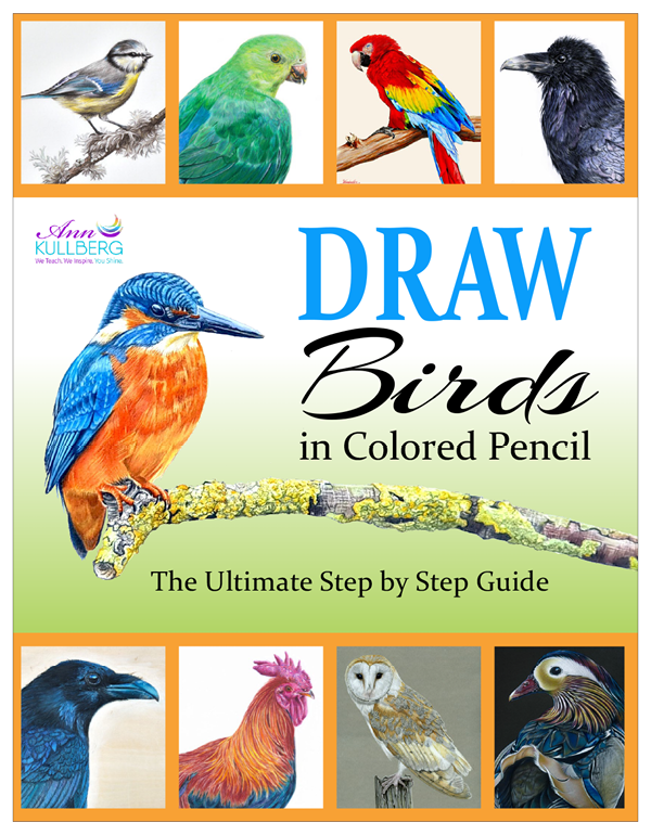 DRAW Birds in Colored Pencil