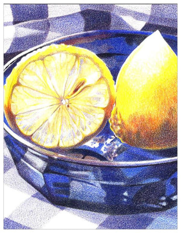 Lemons Colored Pencil Project Kit
