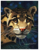 Leopard Colored Pencil Project Kit