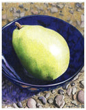 Pear Colored Pencil Project Kit