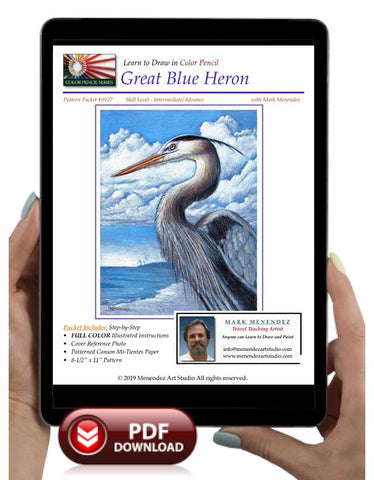 Mark Menendez: Great Blue Heron Colored Pencil Tutorial