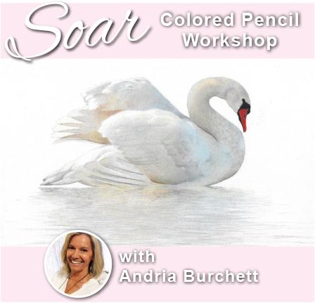 SOAR Workshop - Radiant Swan on white paper - Ballwin, MO