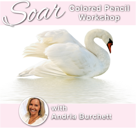 SOAR Workshop - Andria Burchett - Bothell, WA - Jan. 2019 (Balance)