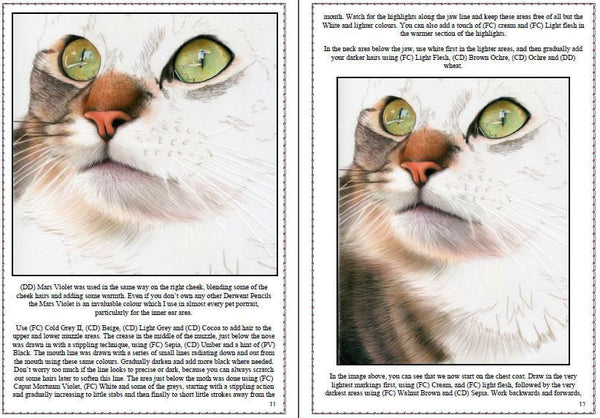 Cat on Drafting Film Colored Pencil Project Kit - Instant Digital Download-Colored Pencil Project Kits-Ann Kullberg
