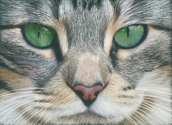 Emerald Eyes in Scratch Art Colored Pencil Project Kit - Instant Digital Download-Colored Pencil Project Kits-Ann Kullberg