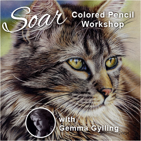 SOAR Workshop - Majestic Cat - Cedar Rapids, IA