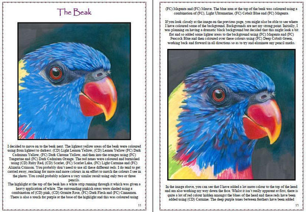 Lorikeet Colored Pencil Project Kit - Instant Digital Download-Colored Pencil Project Kits-Ann Kullberg