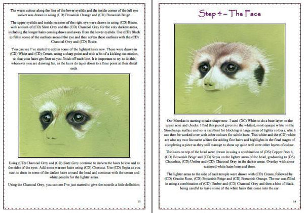 Meerkat Colored Pencil Project Kit - Instant Digital Download-Colored Pencil Project Kits-Ann Kullberg