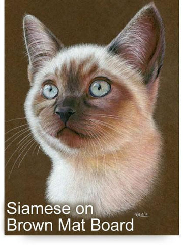 Siamese Cat Colored Pencil Project Kit - Instant Digital Download-Colored Pencil Project Kits-Ann Kullberg