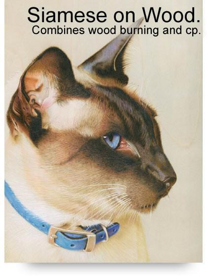 Siamese Cat on Wood Colored Pencil Project Kit - Instant Digital Download-Colored Pencil Project Kits-Ann Kullberg