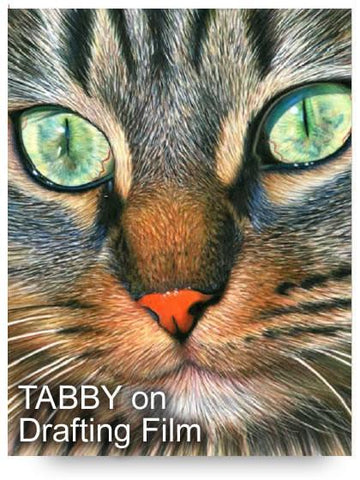 Tabby Cat Colored Pencil Project Kit - Instant Digital Download-Colored Pencil Project Kits-Ann Kullberg