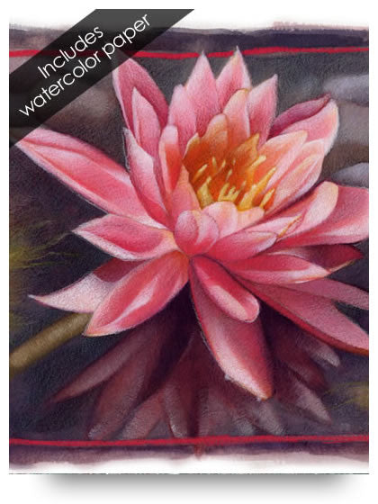 Waterlily Colored Pencil Project Kit-Colored Pencil Project Kits-Ann Kullberg