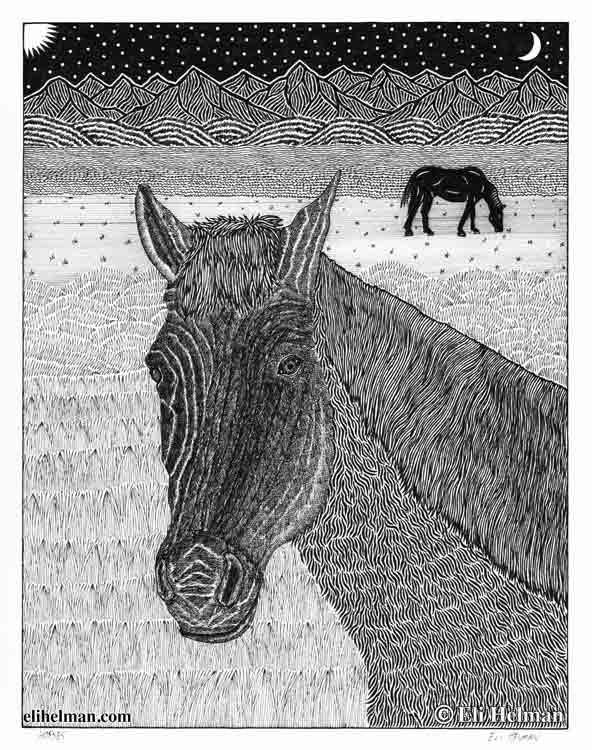 Cat | Horse | 8X10 Pen & Ink Art Prints Uni-T