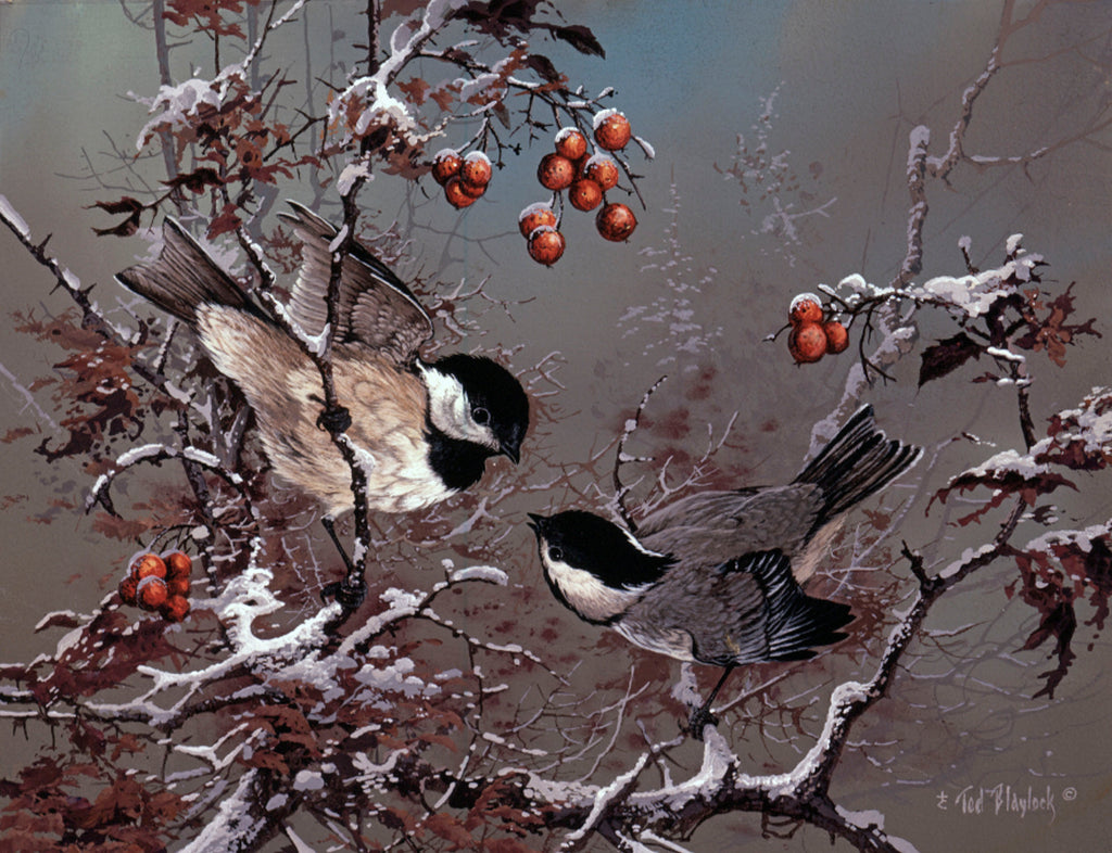 Blackcaps and Berries