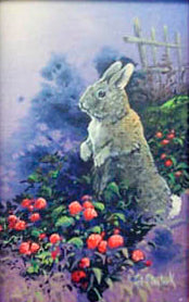 Bunny in the Berries