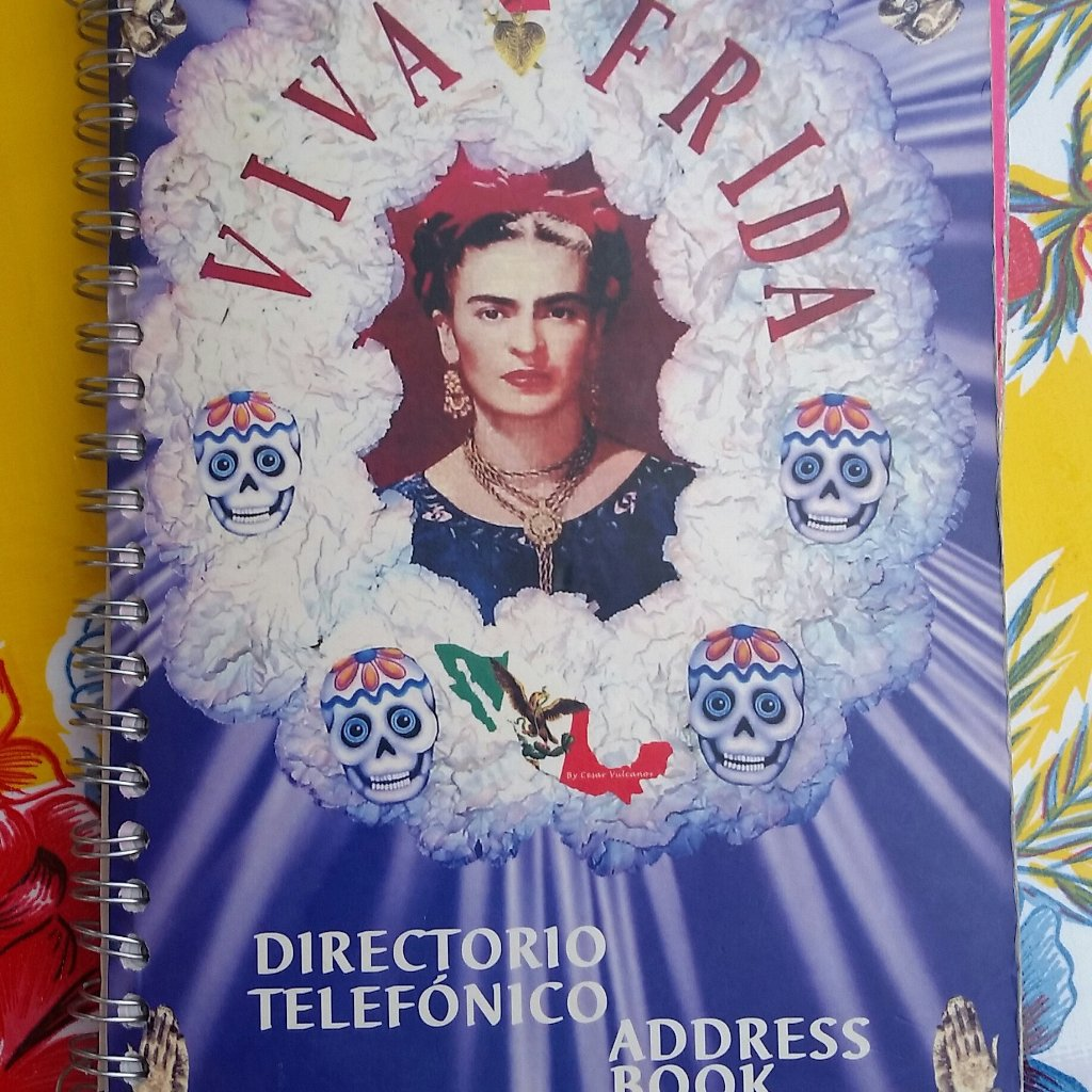 Frida Address Book
